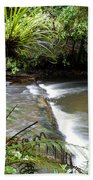 Jungle Stream  Beach Sheet