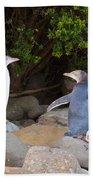 Juvenile Nz Yellow-eyed Penguins Or Hoiho On Shore Beach Towel