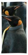 King Penguin Colony Beach Towel
