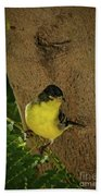 Lesser Goldfinch Beach Towel