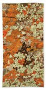 Lichen Abstract Beach Towel