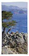 Lone Cypress Tree Beach Towel