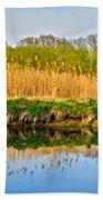 Mirror Image Beach Towel