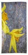2 Old Daffodils Beach Towel