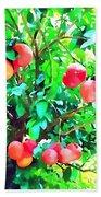 Orange Trees With Fruits On Plantation Beach Towel