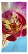 Pink Orchid Flower Details Beach Towel