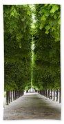 Palais Royal Trees Beach Towel