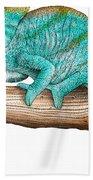 Parsons Chameleon Beach Towel
