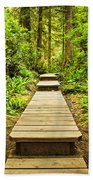 Path In Temperate Rainforest Beach Towel