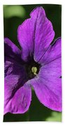 Petunia Hybrid From The Sparklers Mix Beach Towel