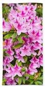 Pretty In Pink - Spring Flowers In Bloom. Beach Towel