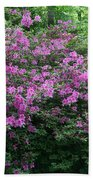 Purple Azaleas Beach Towel