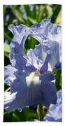 Purple Bearded Iris Beach Towel