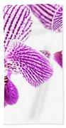 Purple Orchid-5 Beach Towel
