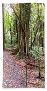Rain Forest Beach Towel by Les Cunliffe