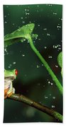 Red-eyed Tree Frog In The Rain Beach Towel