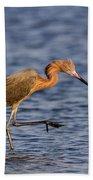 Redish Egret Beach Towel