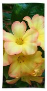 Rhododendron 'toff' Beach Towel