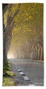 Saint Remy Trees Beach Towel
