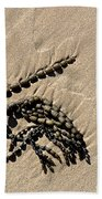 Seaweed On Beach Beach Towel