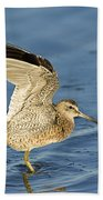 Short-billed Dowitcher Beach Towel