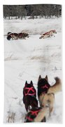 Sled Dog Beach Towel