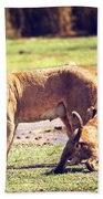 Small Lion Cubs With Mother. Tanzania Beach Towel