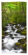 Smoky Mountain Stream Beach Towel