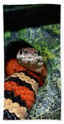 Snake Beach Towel