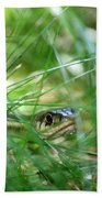 Snake In The Grass Beach Towel