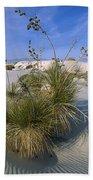 Soaptree Yucca In Gypsum Dunes White Beach Towel