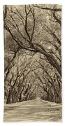 Southern Journey Sepia Beach Towel