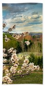 Spring Time Beach Towel by Robert Bales
