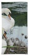 Swan Family Beach Towel
