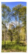 The Ancient Forest Beach Towel