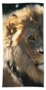 The King Of The Jungle Beach Towel