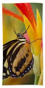 The Postman Butterfly Beach Towel