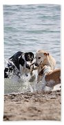 Three Dogs Playing On Beach Beach Towel