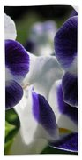 Torenia From The Duchess Mix Beach Towel by J McCombie