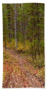 Trail In Golden Aspen Forest Beach Towel