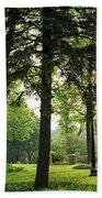 Trees In A Park, Adams Park, Wheaton Beach Towel