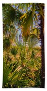 Tropical Forest Palm Trees In Sunlight Beach Towel