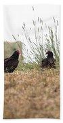 Turkey Vultures Beach Towel