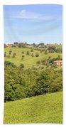 Tuscany - Montepulciano Beach Towel
