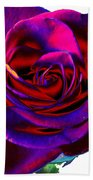 Velvet Rose Beach Towel