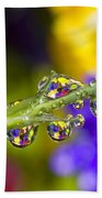 Water Drops On A Flower Stem Beach Towel