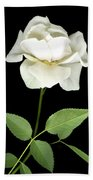 White Rose Beach Towel