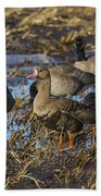 Whitefront Goose Beach Towel