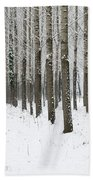Winter Alley Beach Towel