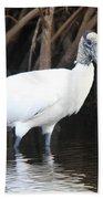 Wood Stork In The Swamp Beach Towel